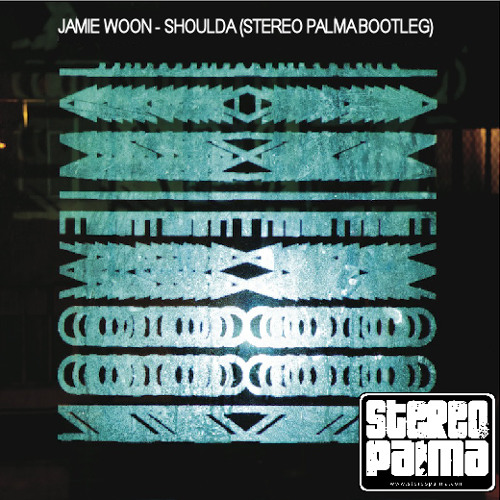 Jamie Woon - Shoulda (Stereo Palma Bootleg) preview FREE DOWNLOAD