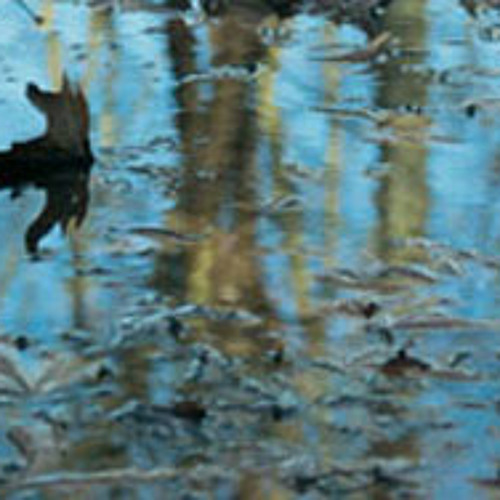 """Ποίημα: """"Το Όνειρο μιας Βροχής"""" / Poem: """"The Dream of a Rainfall"""", της Ιωάννας Μουτσοπούλου"""