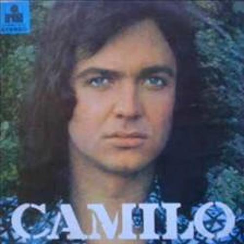 Fresa Salvaje - Camilo Sexto  (Raeggeton Mix)