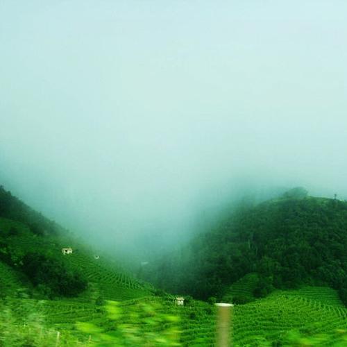 Rain In The Mountains by Diederik de Jonge