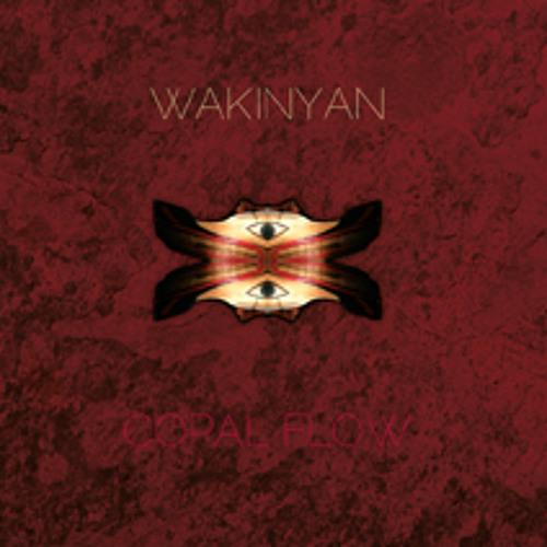 Wakinyan - 05. Leere Zeit (BW04)