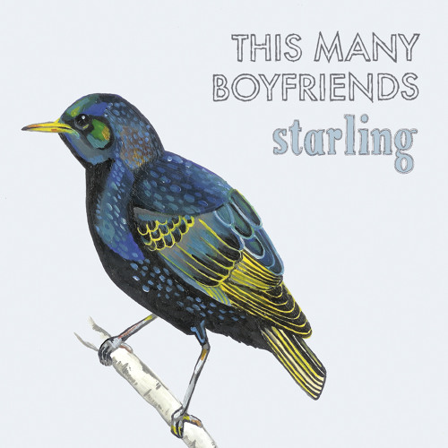 This Many Boyfriends - 'Starling'