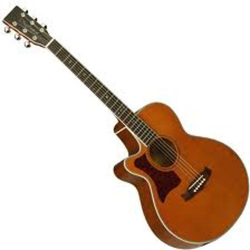 Acoustic Roxx