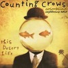 Counting Crows - Colorblind (Cajetanus Edit)