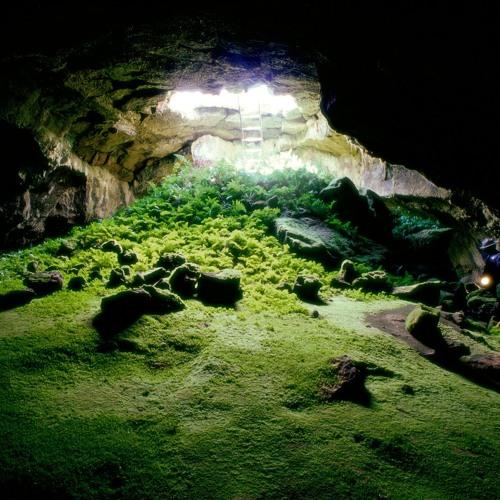 JBR - Cave