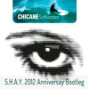 Saltwater - Chicane (2012 S.H.A.Y. Wedding Anniversary Bootleg) - FREE DOWNLOAD!