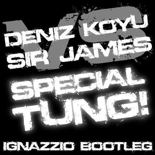 Deniz Koyu vs Sir James - Special Tung! (Ignazzio Bootleg)