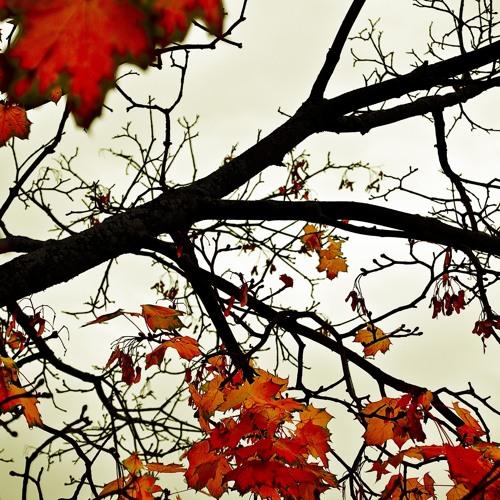 ATB - The Autumn Leaves (Original Vocal Mix)