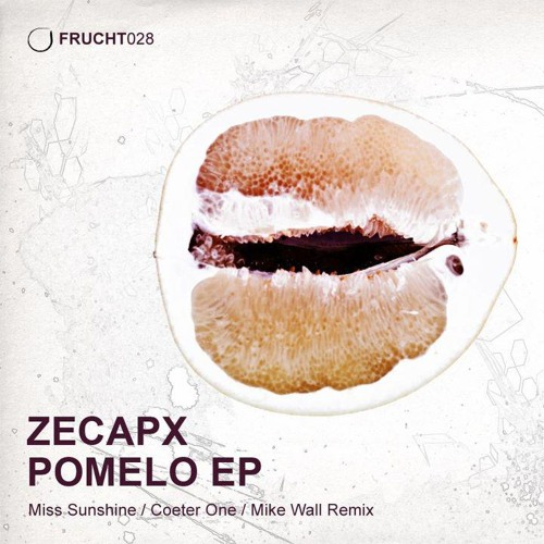 Zecapx - Blue Turn - (Frucht Label - FRUCHT028)