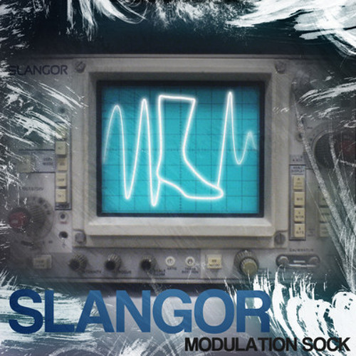 Modulation Sock by Slangor