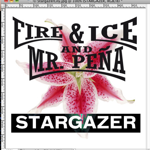 Stargazer (Fire&Ice and Mr.Peña Meditate Remix)