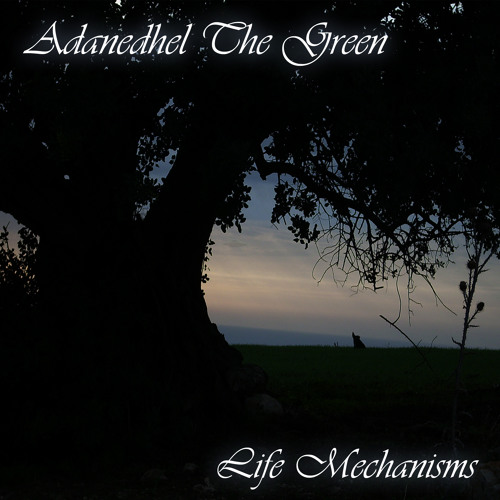 #2 - Life Mechanisms - 2008