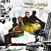 Baul Junkie. Album: Sounds of Bengal 2012