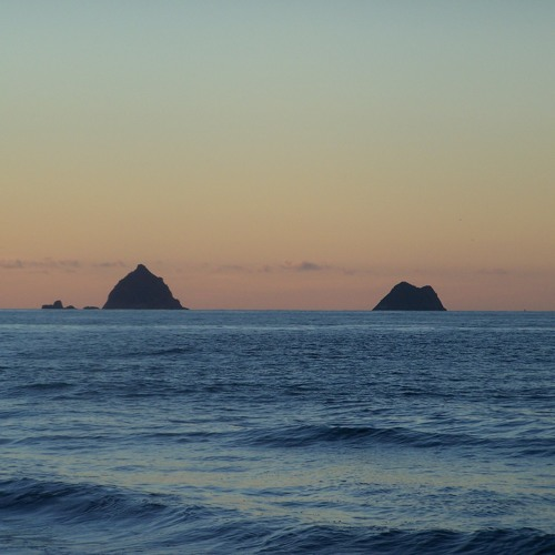 Field Recording Set #15 - Tasman Sea / New Plymouth