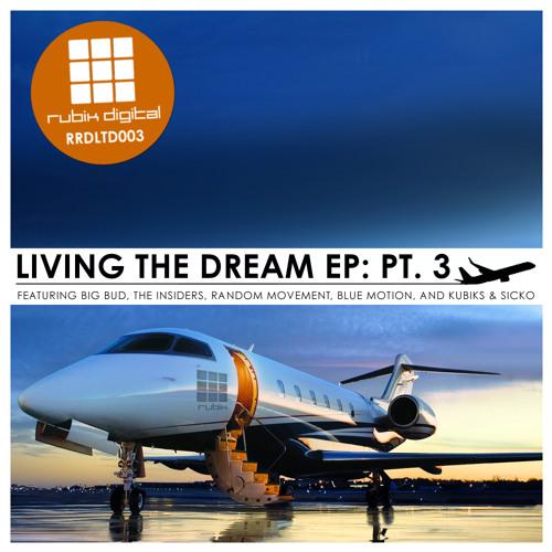 Cybass - It's A New Life For Me (Big Bud remix) - RRDLTD003