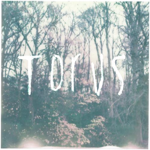 Torus - Vocaldonuts (Slugabed Remix)