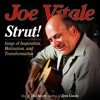 Joe Vitale - Today's The Day