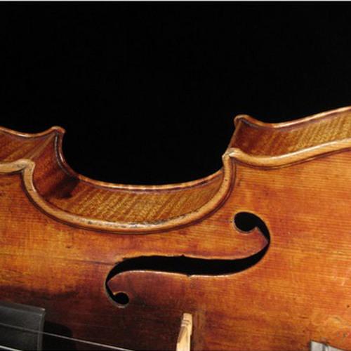 Violence violin