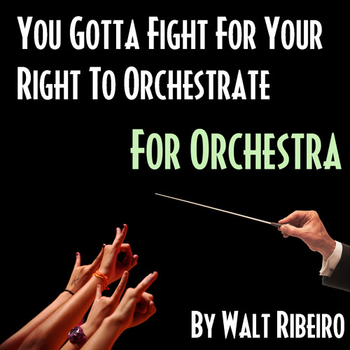 Beastie Boys 'You Gotta Fight For Your Right' by Walt Ribeiro