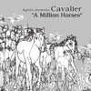 Cavalier - Marwari (Rey Aguilar Edit)