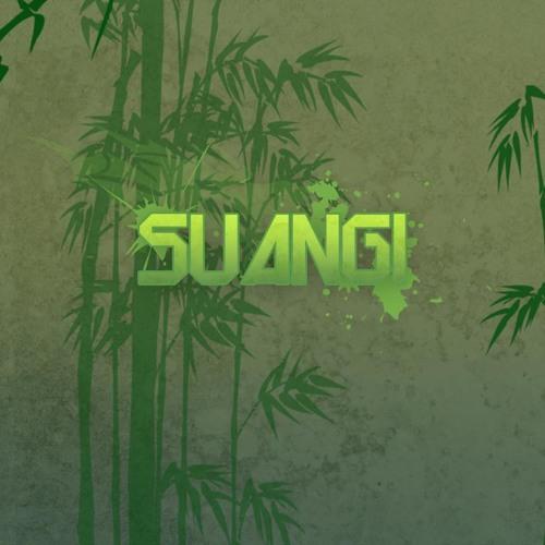 Suangi- Hook Up Shook Up