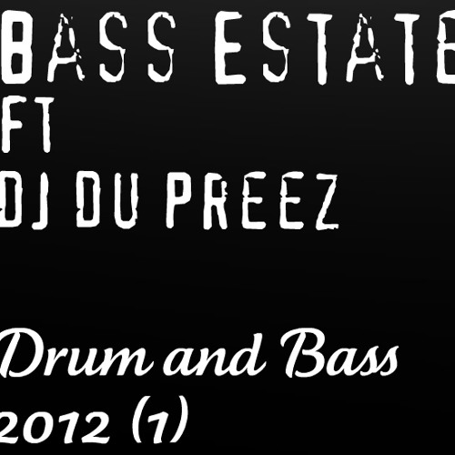 X-Craft w/ Bass Estate (DnB Mix 2012)