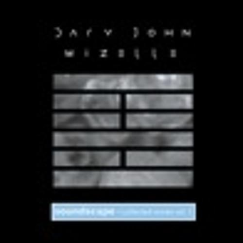 Dary John-Mizelle: Soundscape Skin