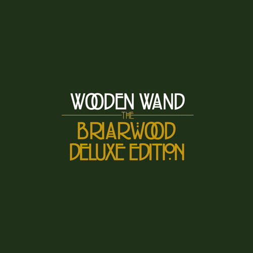 Wooden Wand - Winter In Kentucky (DEMO)