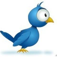 Ludacross - Mein Vogel
