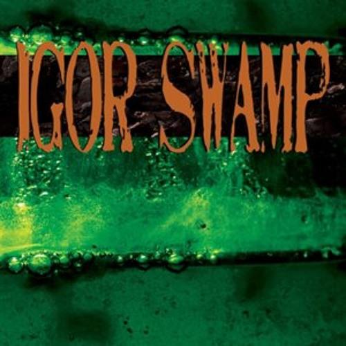 05 Igor Swamp - Foggy District