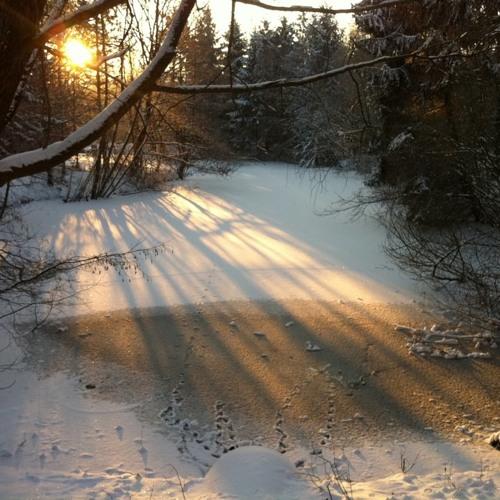 Jeebs - Winter Boogie
