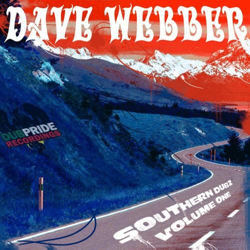 Dub's Dub (Clip) - DubPride Recordings **OUT NOW**