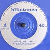 Bluetones slight return vinyl