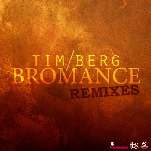 AVICII - Bromance (EffWalter Dub Remix) AKA - Oceans (Free Download)