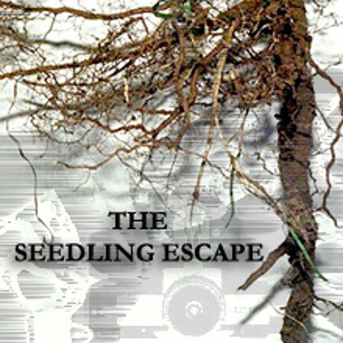 The Seedling Escape another bitter funk remix v.013 w/ Ooah