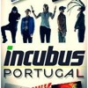 Incubus - Have You Ever [Live Melbourne 2012]