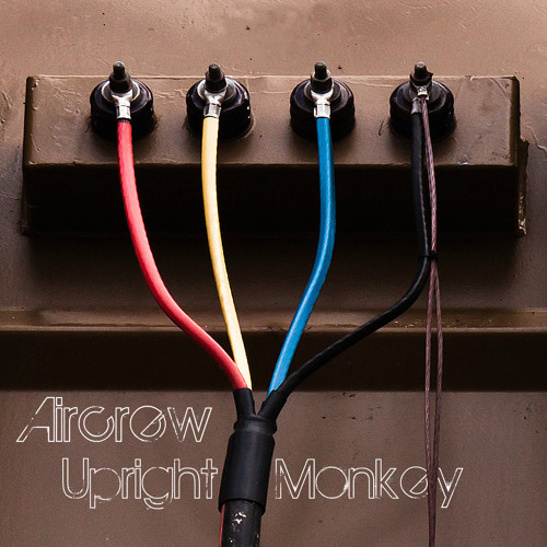 Aircrew - Upright Monkey