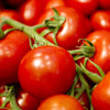 TKC Ep 2 Top tips for the perfect tomato sauce