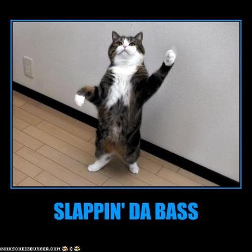 Refracture - Slappin' Da Bass *FREE DOWNLOAD*