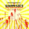 Shawn Lee's Ping Pong Orchestra - Bollywood
