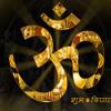 Shiva Aarti ( Maha Shivratri ) ( Om Jai Shiva Omkara ) REMIX (DJ VINAY)