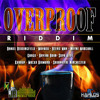 Overproof Riddim Mashup (Deejay FL3XX)