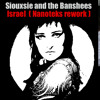 Siouxsie and the Banshees - Israel ( ANA Rework )