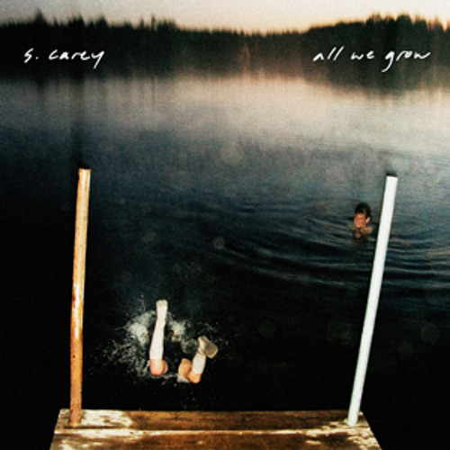 S. Carey - In The Stream