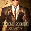 TERI MERI MERI TERI PREM KAHANI -DJ JAY ( MAFIA STYLE MIX )2012