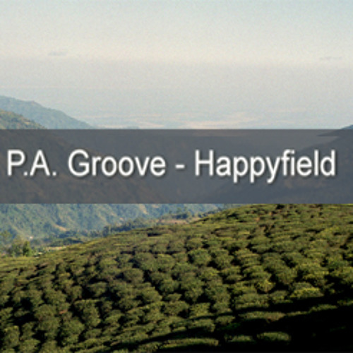 P.A. Groove - Happyfield
