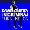Download David Guetta ft. Nicki Minaj- Turn Me On(Dj Px Bootleg Remix) Mp3