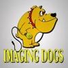 Imaging Dogs Belgium - Justin Hibbard Demo