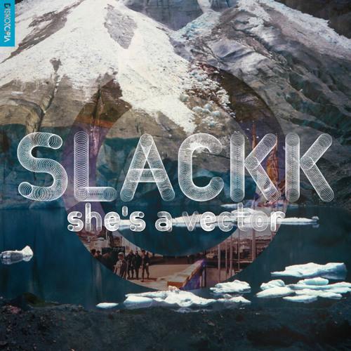 Slackk - She's A Vector