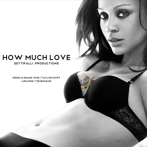 How Much Love (Fedde Le Grand, P!nk, Taylor Swift, Ludacris, The Buggles) + DL Link
